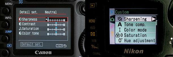 Bird Photography Tutorial 4: Camera Settings